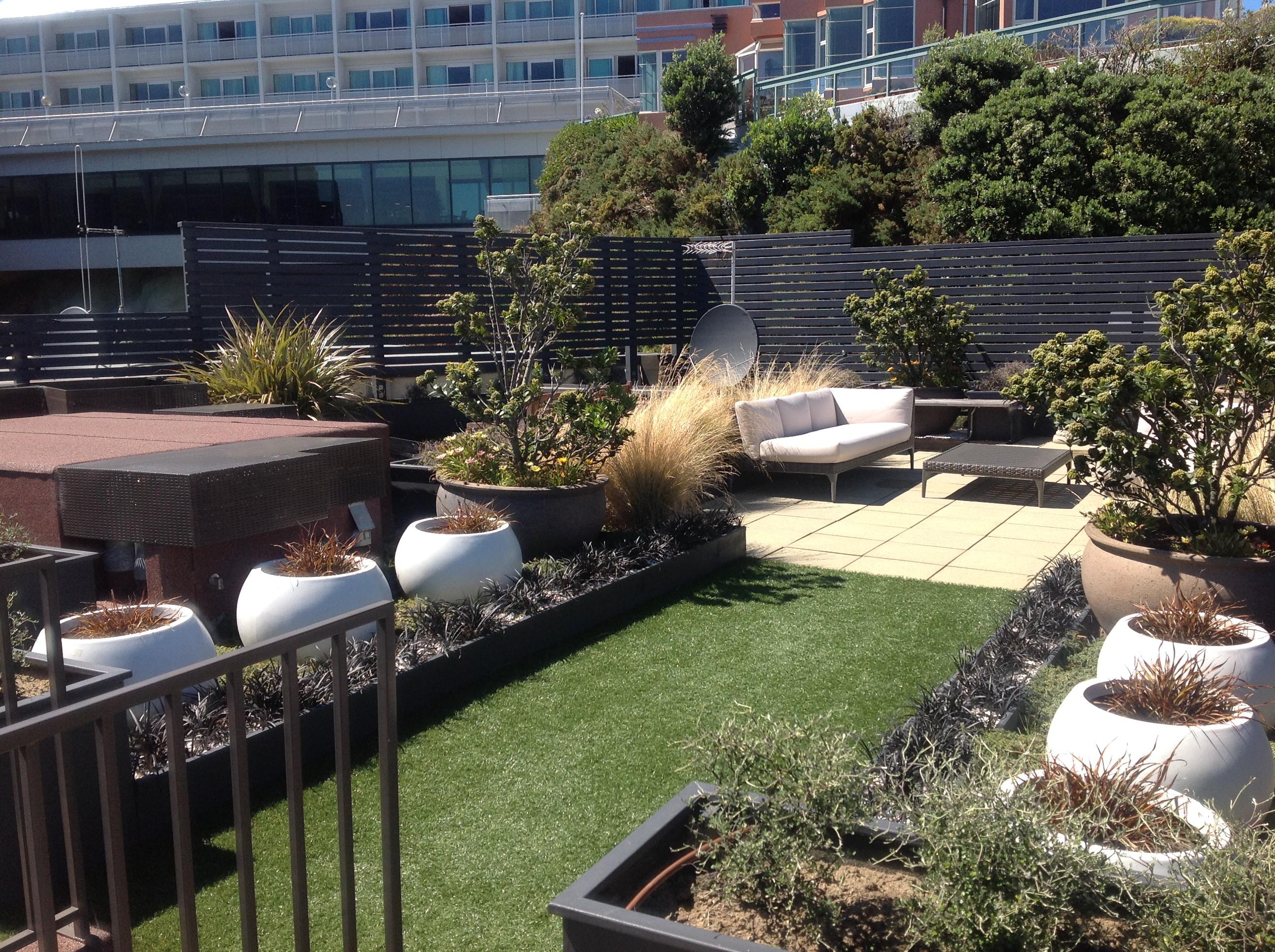 Landscaping Landscape Design Designers Swimming Pools New Zealand
