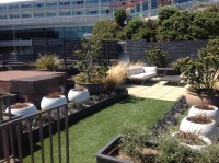 A Roof garden in Wellington landscape design jamie reid ...