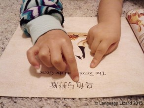hands reading bilingual book