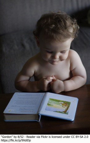 baby reading bilingual baby book