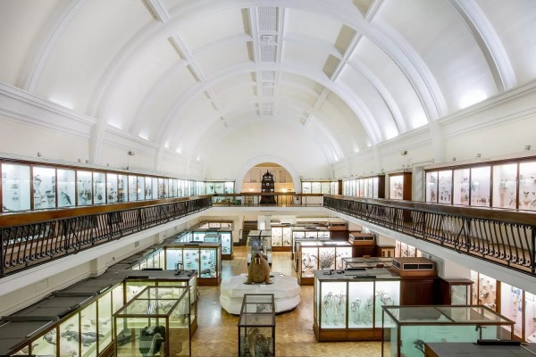 8 London Museums 've Heard Of
