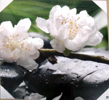 Lienzos flores