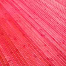 Bambú rojo - detalle