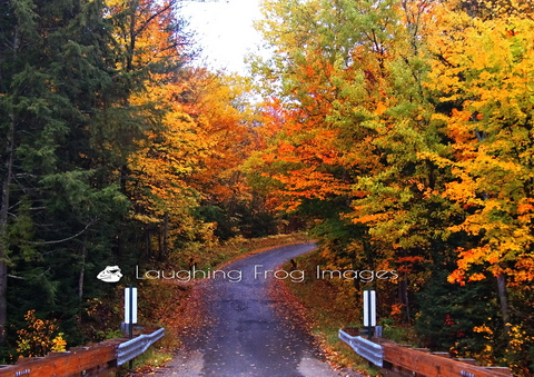 Where will the road take you on a fine fall day? Zeeland, NH for fall foliage, perhaps?
