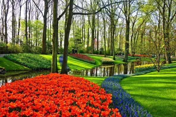 garden-3345970_1920