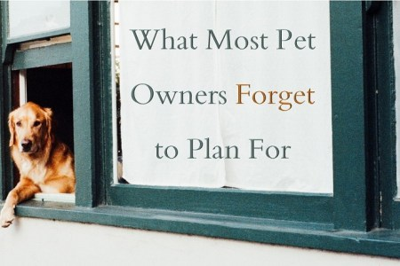 What Most Pet Owners Forget to Plan For