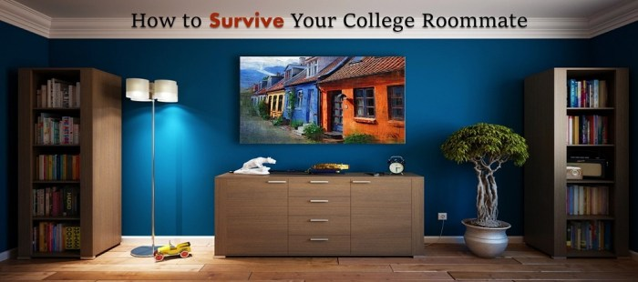 How to Survive Your College Roommate