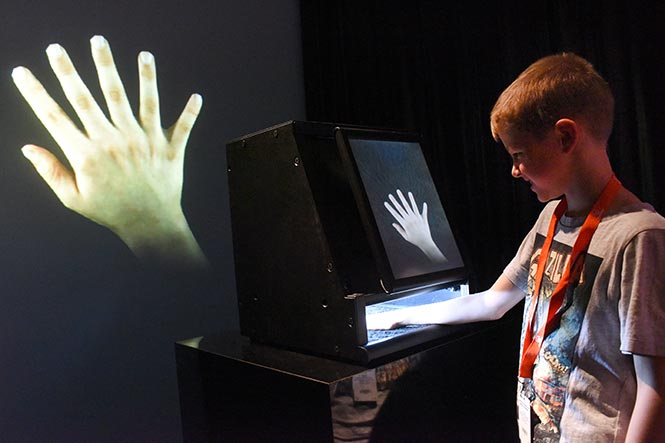 Reimagine Your Hands with the Augmented Hand Series