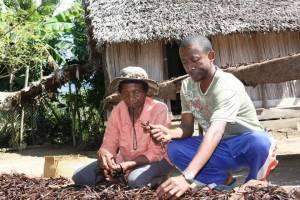 producteur de vanille de Madagascar, Comptoir de Toamasina