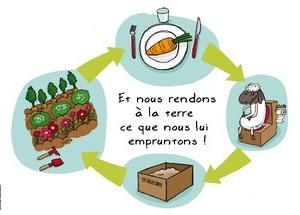 Du potager au compost