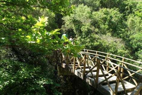 melissa gorge 3