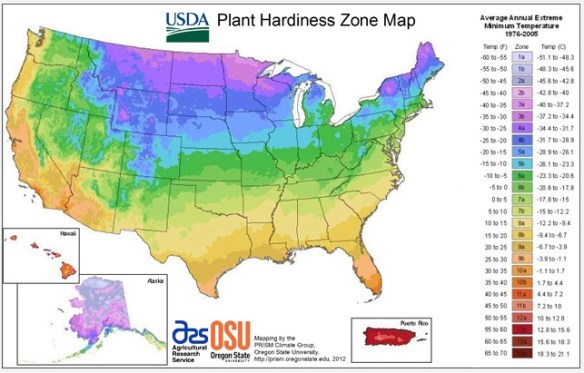 Check the USDA hardiness zone map as you plan your garden!