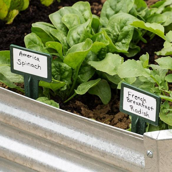 Eco-friendly MCG BioMarkers ™ keep your garden organized. Set of 36 reusable markers at Lehmans.com.