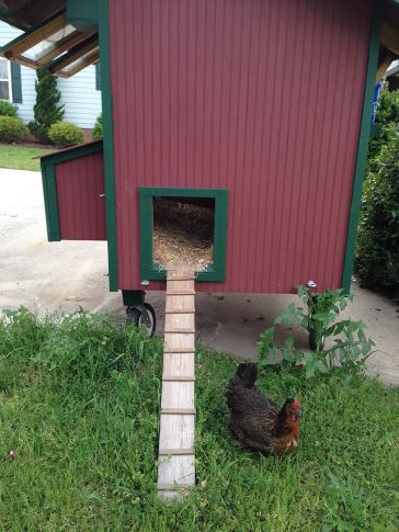 The 'exit ramp' slides into the coop for so Jolie can hook it up to the tractor and move it herself.