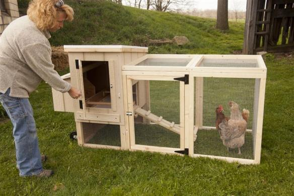 Our portable coop let you lift and roll the entire coop around your yard daily to every few days, as the chickens aerate and fertilize the soil. At lehmans.com and our store in Kidron, Ohio.