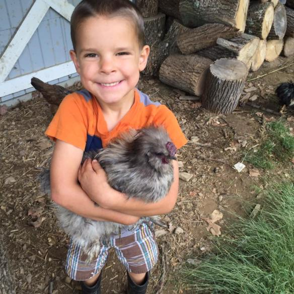 sarah's son and chicken