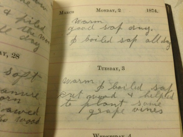 journal entry from 1874
