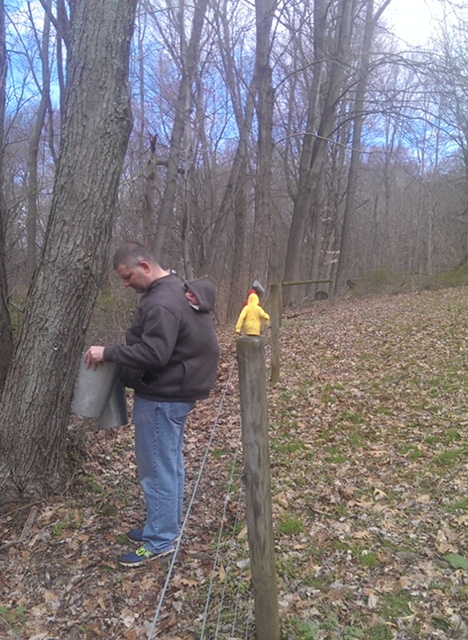 checking sap buckets