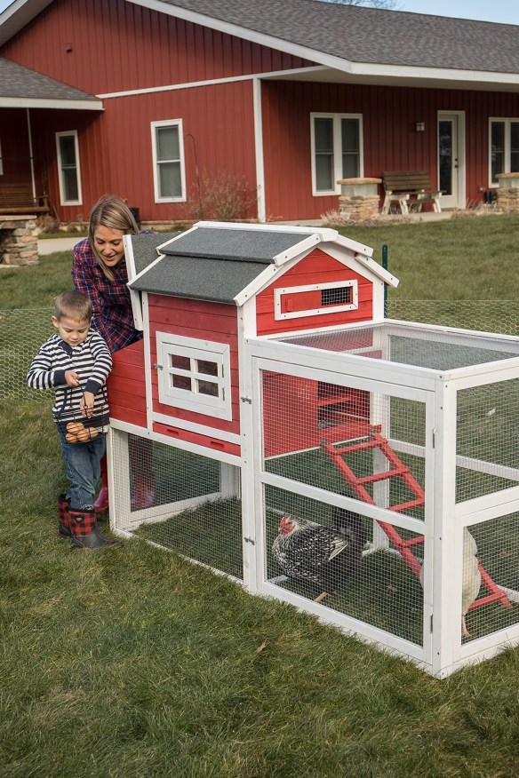 family with chickens and coop