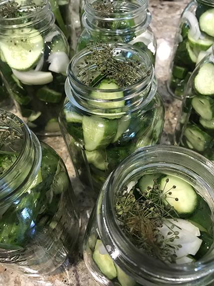 stuff the jars