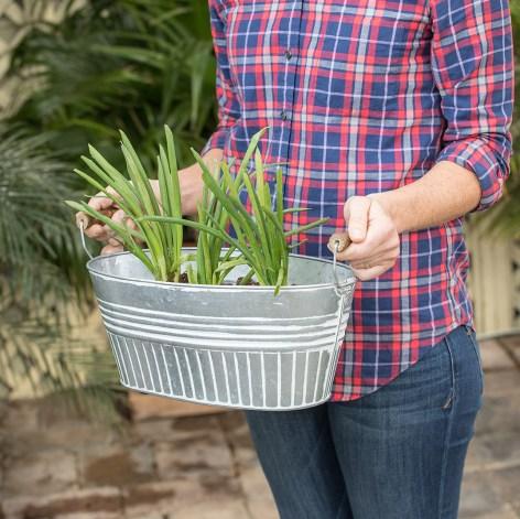 galvanized basin planter