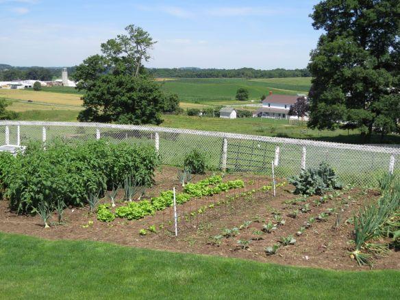 Troycraft garden