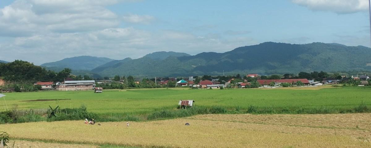 Un rapide passage à Luang Namtha