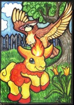 016-pidgey