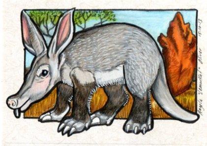 151013-aardvark