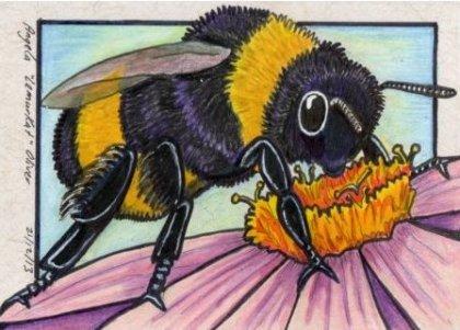 211213-bumblebee