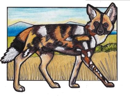paintedwolf