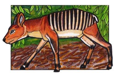 zebraduiker