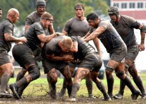 rugby san patricio
