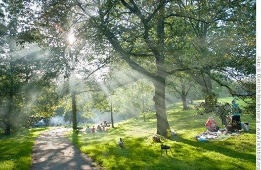Sonntagnachmittag im Fredenbaumpark Dortmund. Lichtspiel im Rauch der Grillfeuer. Foto ©DietrichHackenberg