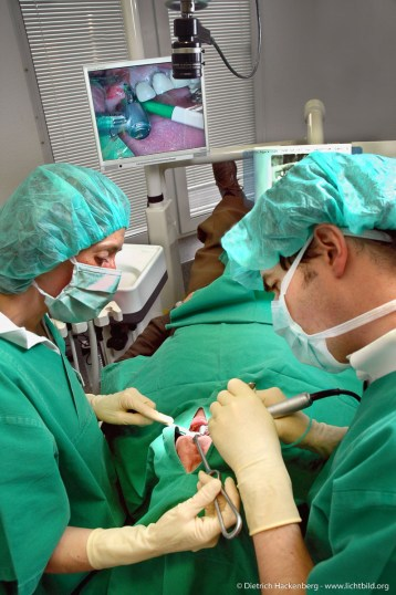 Oralchirurg. Foto Dietrich Hackenberg