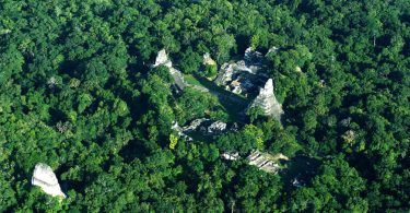 aerial photo Ancient Maya Civilization Revealed with Lidar