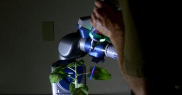 Image of Plant Science Advanced with 3D Laser Scanning