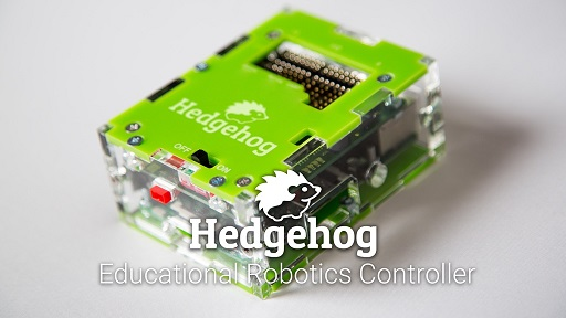 hedgehog50