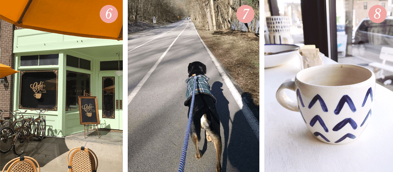 Lily and Val Living Pretty Ordinary blog present a scene from La La Land at Warner Brothers Studio tours, taking a dog for a walk in Pittsburgh's North Park, Pittsburgh's trendy restaurant Vandal in Lawrenceville has the best coffee cups