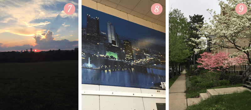 Lily and Val team members share photos of Pittsburgh sunset, Mr. Rogers Neighborhood studio, Spring flowers in bloom in Shadyside