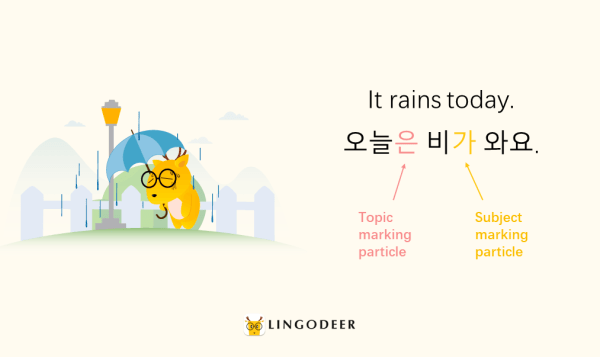 korean sentence structure: Korean subject and object marking particles