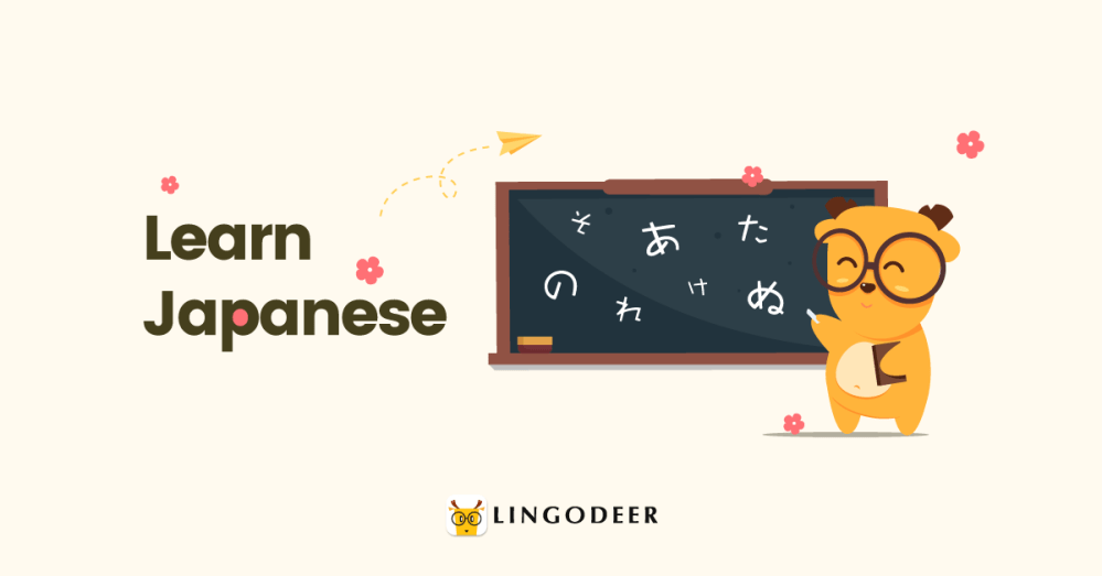 learn Japanese from a beginner