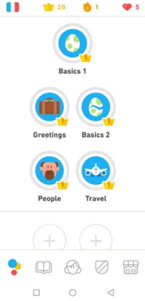 Duolingo French Review topics