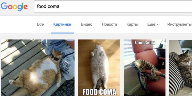 Узнавайте английскую лексику, используя Google Images