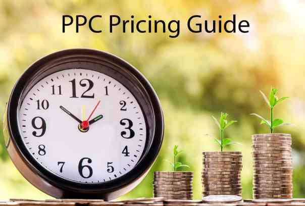 PPC Consultant Rates