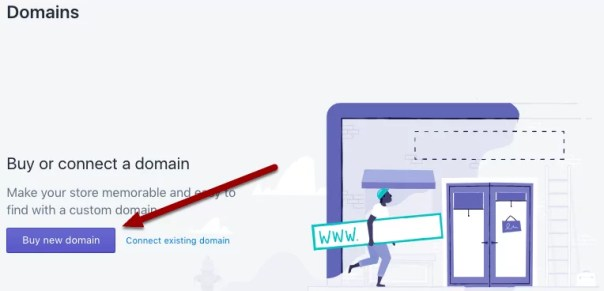 How to setup a shopify store - buy domain