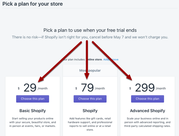 How to setup a shopify store - paid plan