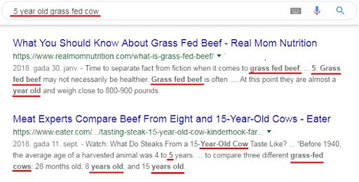 google search operators cheatsheet - quotes