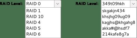 bleh-raid
