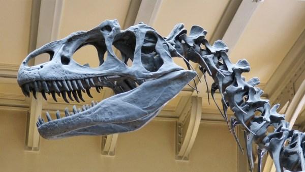 Microrrelato de dinosaurios